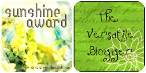 Sunshine / Versatile Blogger Award