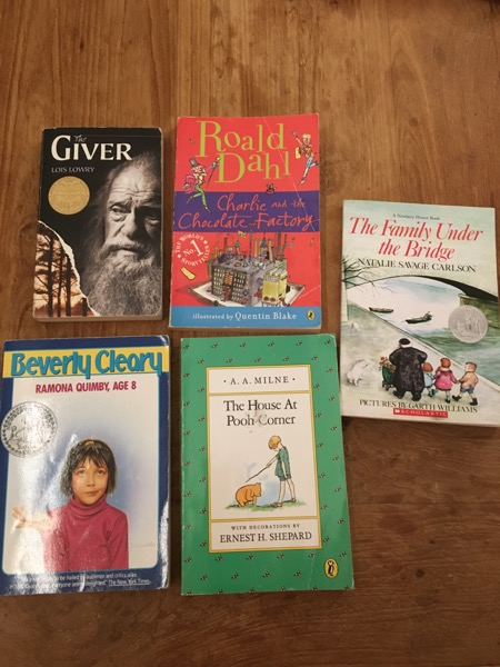 Books for little free library