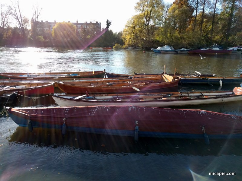 Richmond Upon Thames: boats